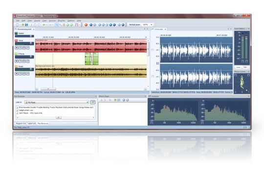 Acon Digital Acoustica Standard Audio Editing Software (DOWNLOAD)