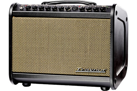 Traynor AM MINI Acoustic Guitar Amplifier